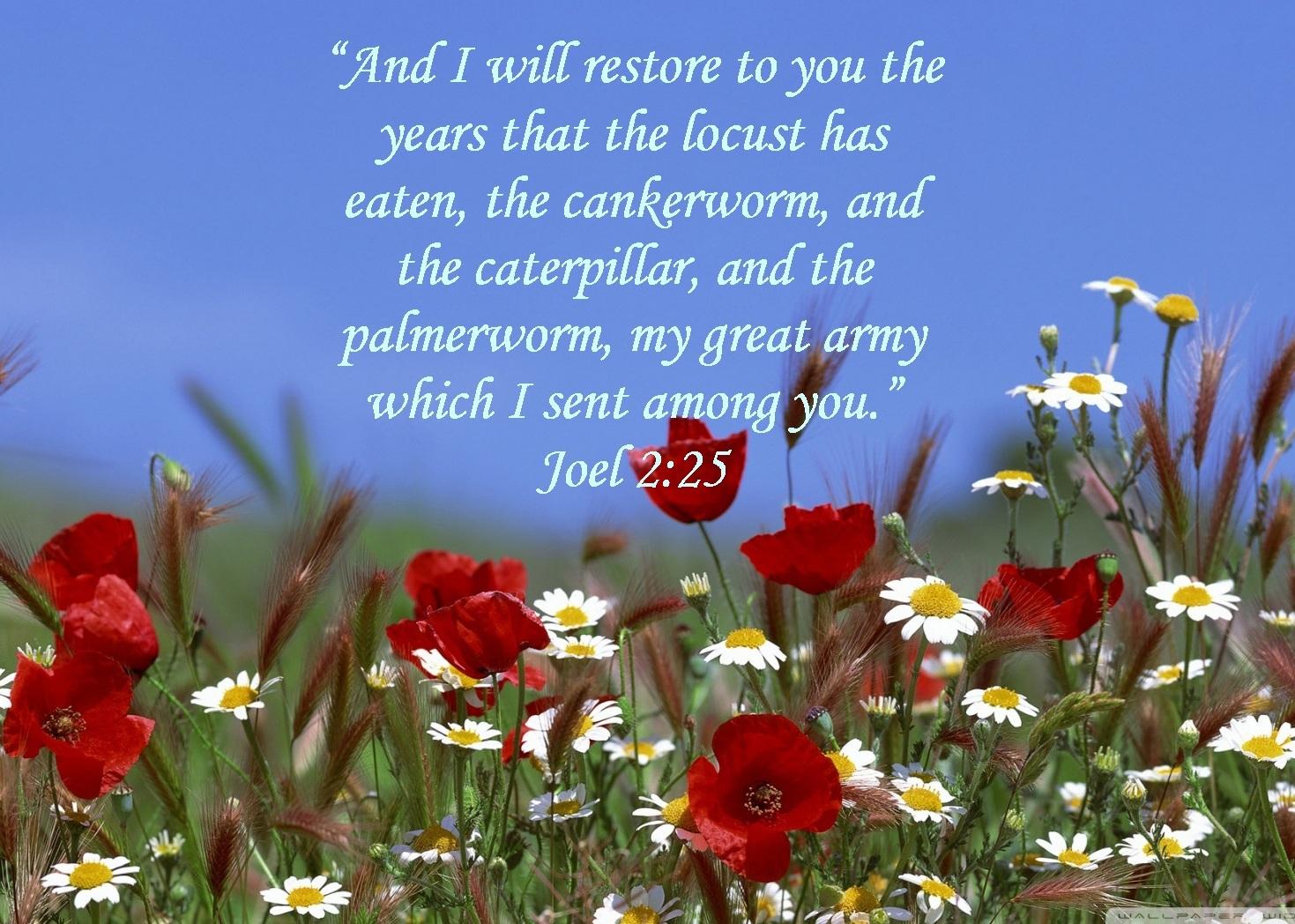 God restored blessings!