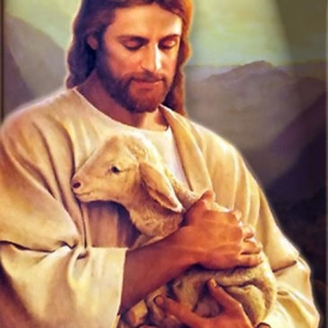 Jesus a very good shepherd